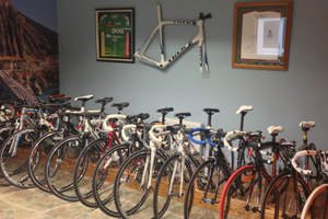 Quality Bicycles & Brands